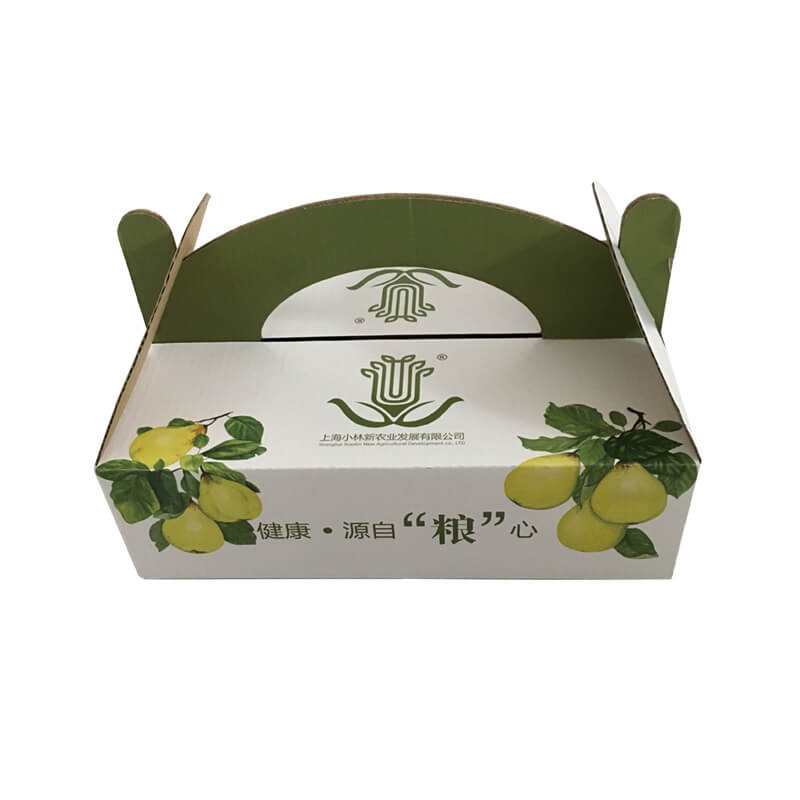 Gable Top Corrugated Carrier Box