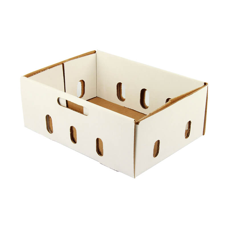 White fresh food box packaging tray