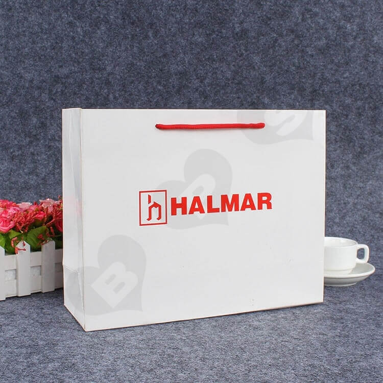 Custom Printed Paper Bag For Spare Parts side view one