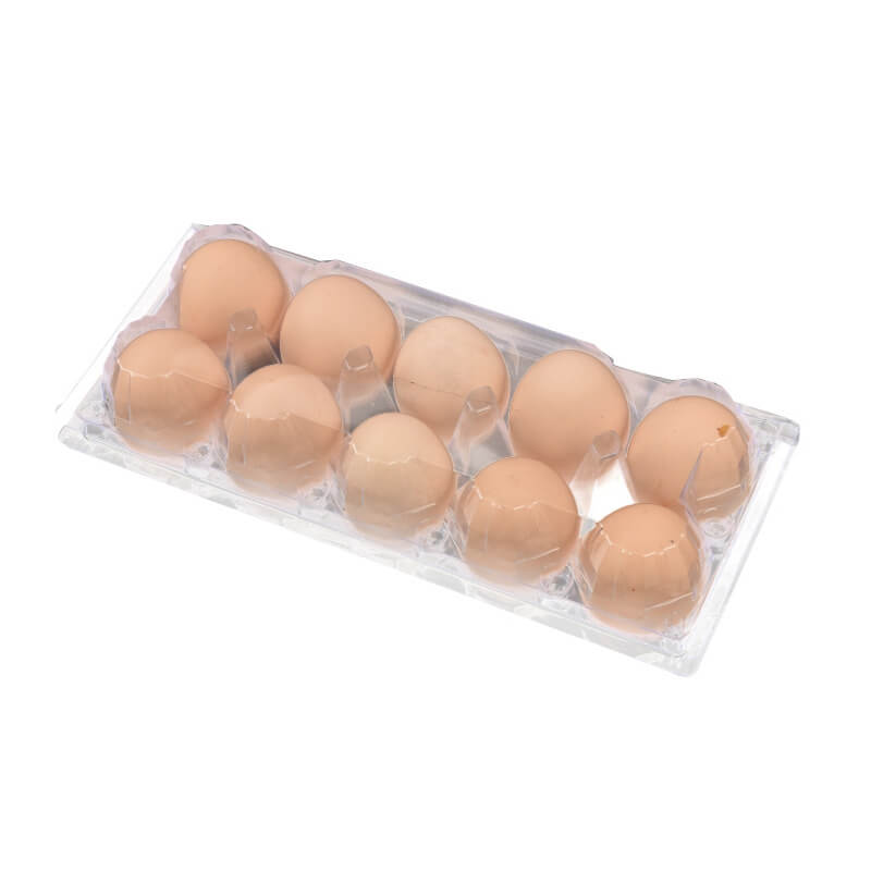 Egg Blister Packaging Box