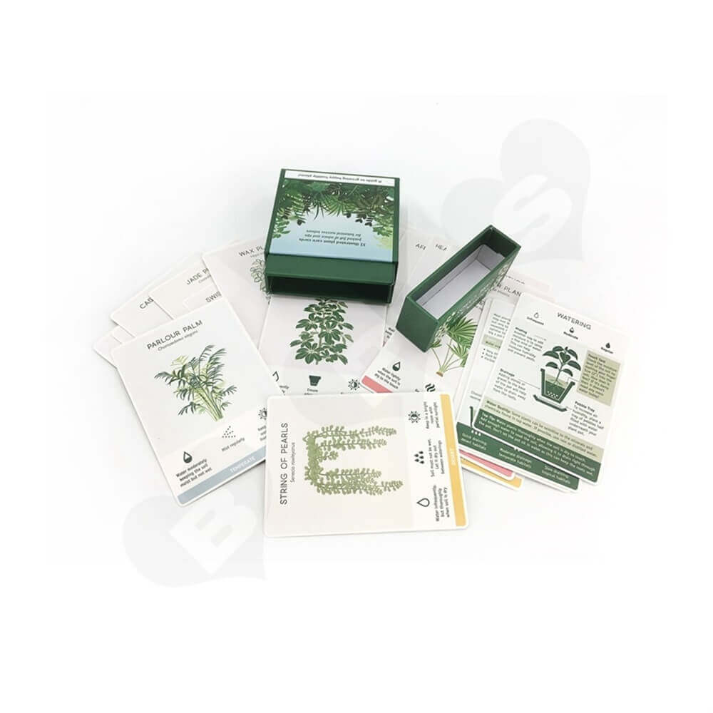 Houseplant Care Cards Packaging Box Side View Five