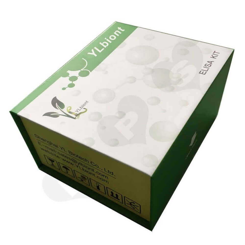 Magnetic Closure Cosmetic Packaging Box Sideview One