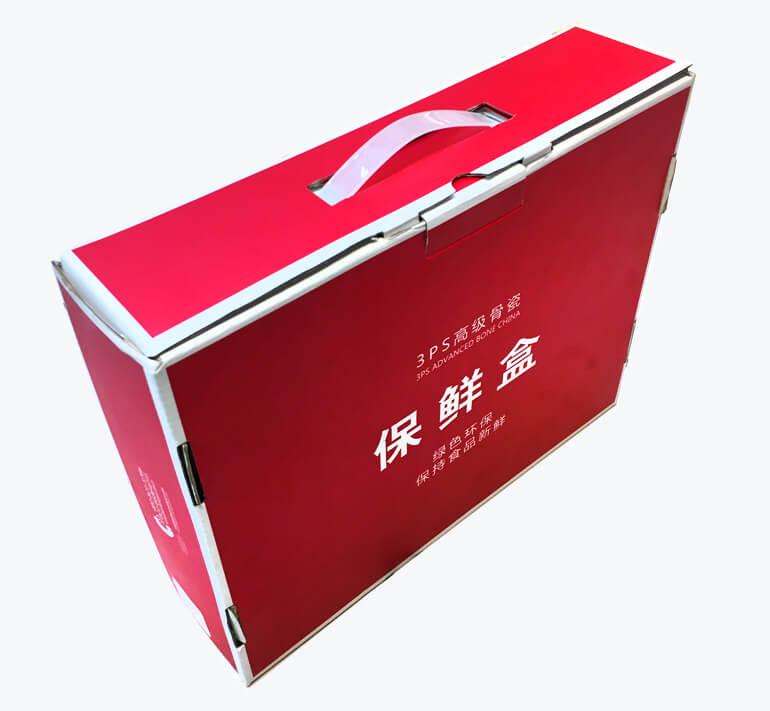 Cardboard Suitcase 2