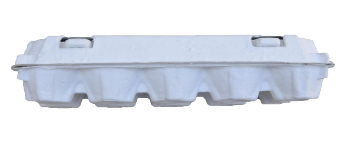 White Pulp Egg Packaging Boxes