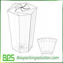 popcorn packaging box design template