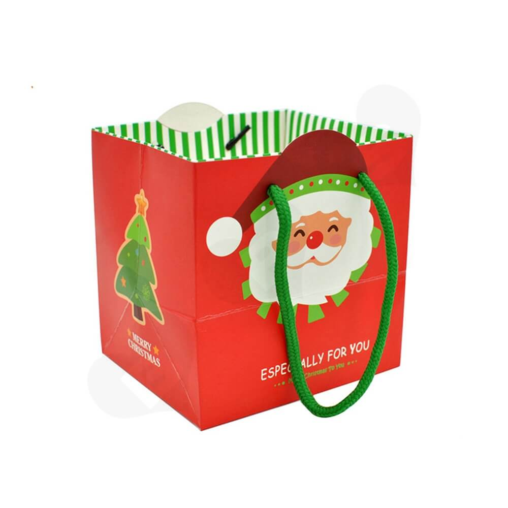Chrismas Color Printed Paper Bags Side View Two