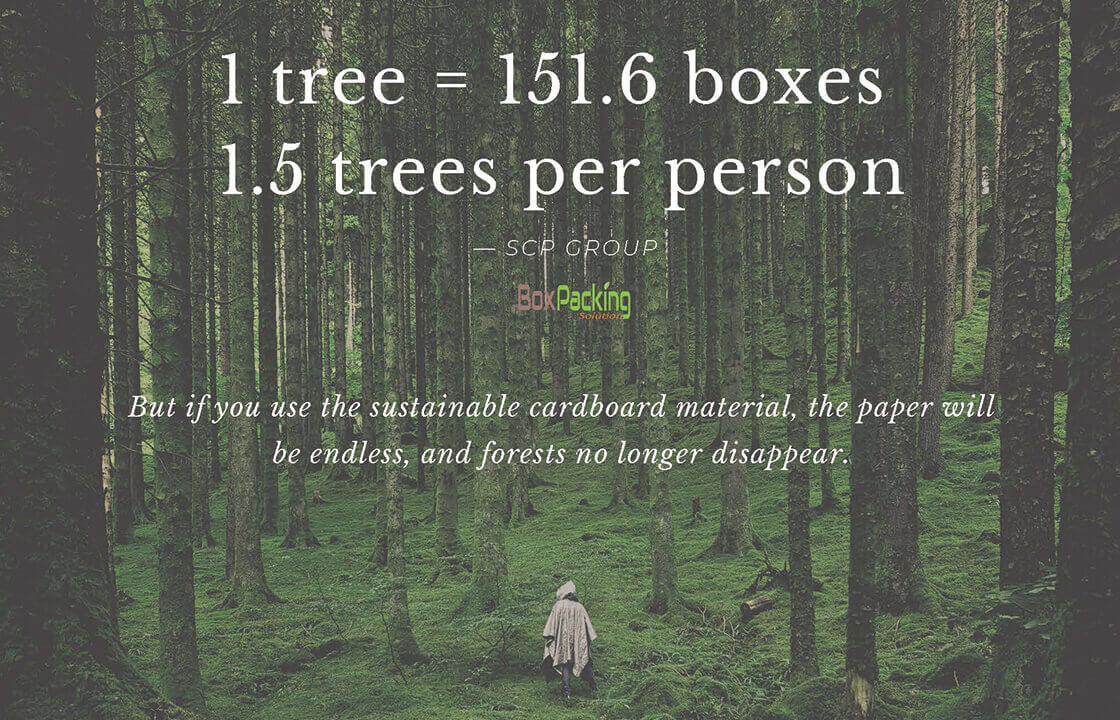 Use Sustainable Cardboard Material To Protect The Forest